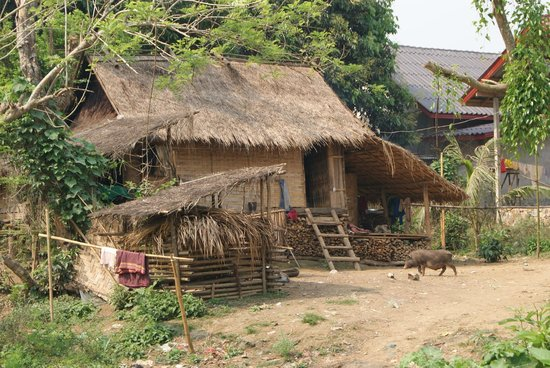 Hillside - Nature Lifestyle Lodge: Village trek