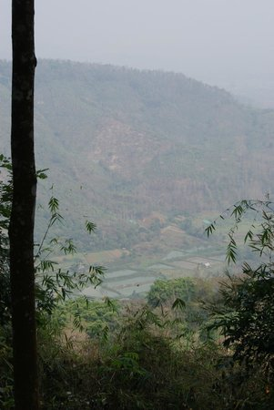 Hillside - Nature Lifestyle Lodge: View from a trek
