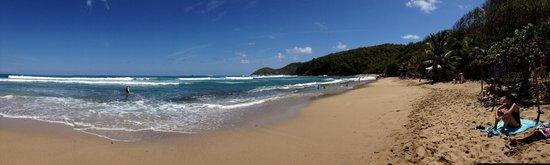 Caravelle Peninsula: Les rouleaux vus de la plage