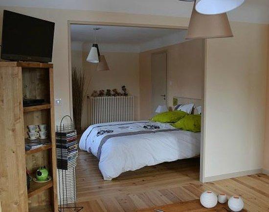 Maison D'Hotes La Pommeraie: Chambre nature