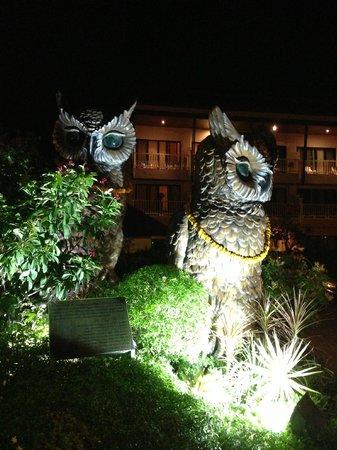 Srisuksant Resort: ทัวร์ 4 เกาะ