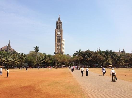Rajabai Clock Tower: grass a bit dry