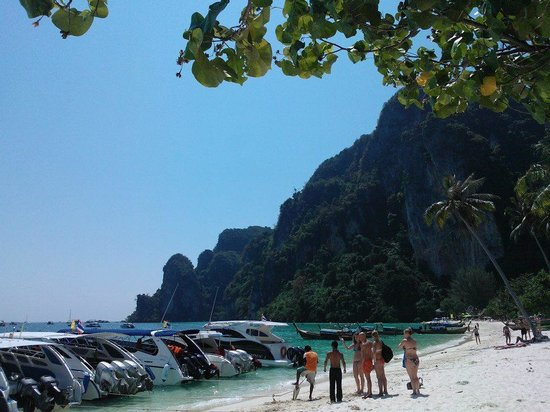 Patong Boutique Hotel: Monkey Beach