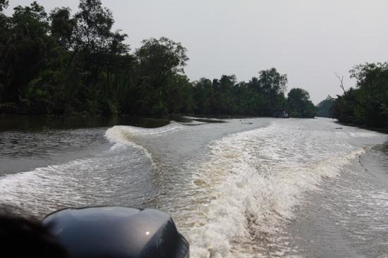 Les Rives by Saigon River Express - Day Tours: coming and looking back