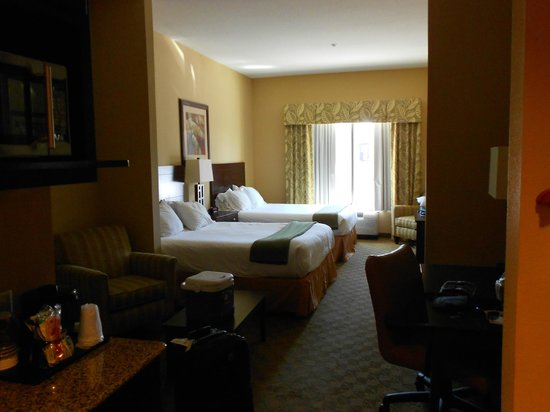 Holiday Inn Express & Suites Tampa USF-Busch Gardens: Room