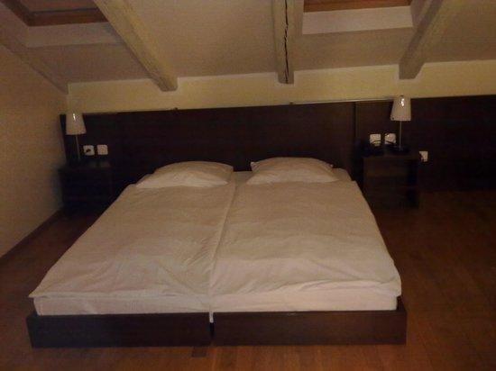 Hotel Trevi: Mansarda