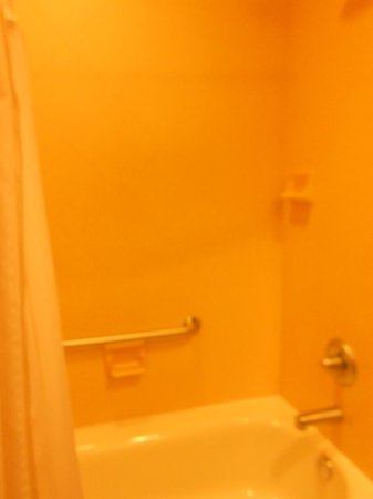 Holiday Inn Express & Suites Tampa USF-Busch Gardens: shower