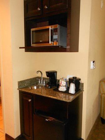 Holiday Inn Express & Suites Tampa USF-Busch Gardens : Kitchenette