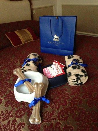 โรงแรมแกรนด์ วีน: Complimentary Gift 2 :))
