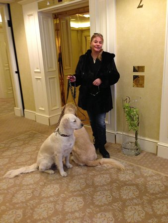 Grand Hotel Wien: Happy Guests