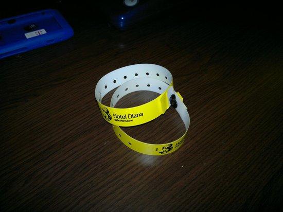 Hotel Diana: Permanent bracelets