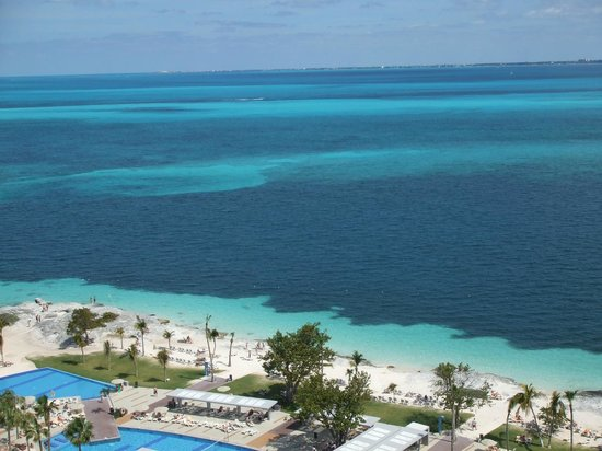 Hotel Riu Palace Peninsula: We love Cancun's water!