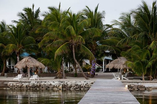 Cocotal Inn & Cabanas: looking back onto the property from the pier