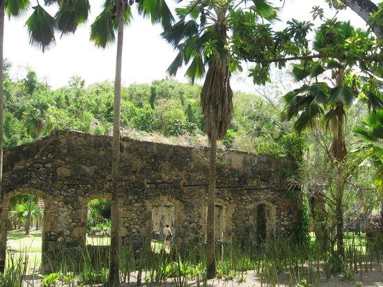 Zoo de Martinique - Habitation Latouche : L'habitation Latouche : maison des maîtres
