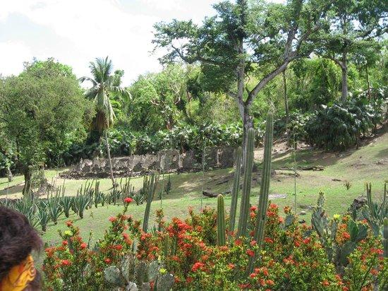 Zoo de Martinique - Habitation Latouche : Habitation Latouche : jardin