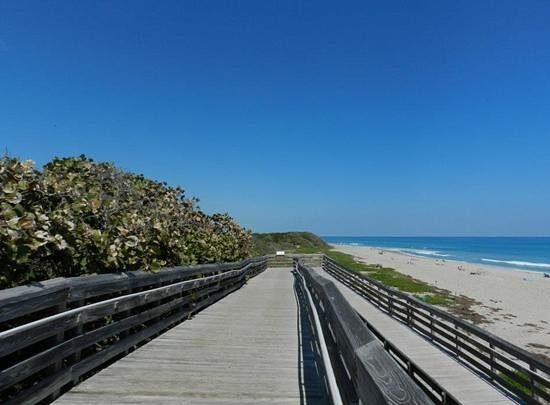 John D. MacArthur Beach State Park: Part of the Board walk that leads you to the beach