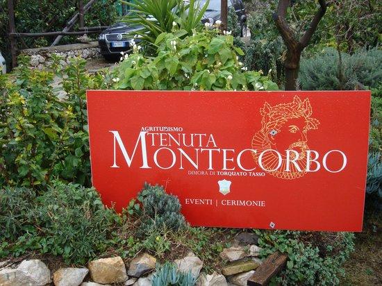Tenuta Montecorbo: Agriturismo Tenuta di Montecorbo, Massa Lubrense (NA)