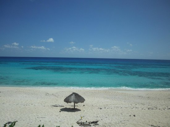 Cozumel Bar Hop: calm beautiful beach
