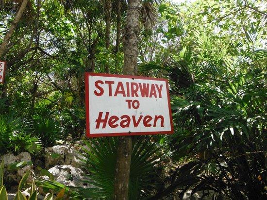 Cozumel Bar Hop: heading towards Coconuts!!