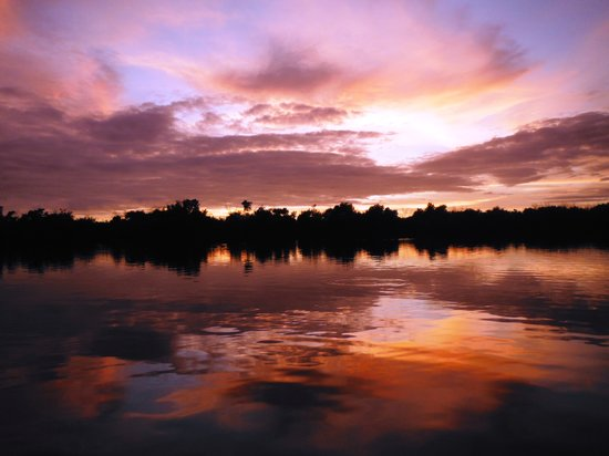 Tour The Glades - Private Wildlife Tours : Sunset on the Mangrove Forest