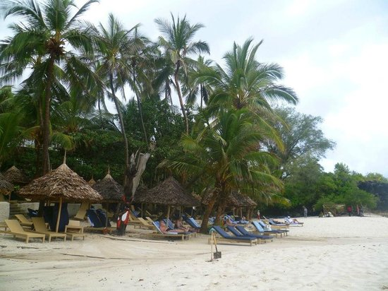 Leopard Beach Resort & Spa: Beach