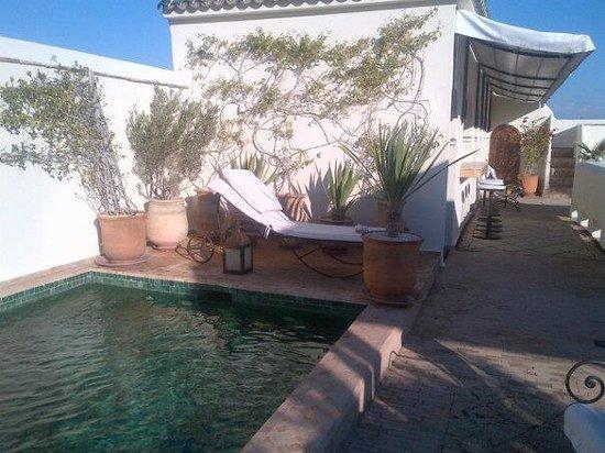 Dar Mo'da: La piscine en terrasse