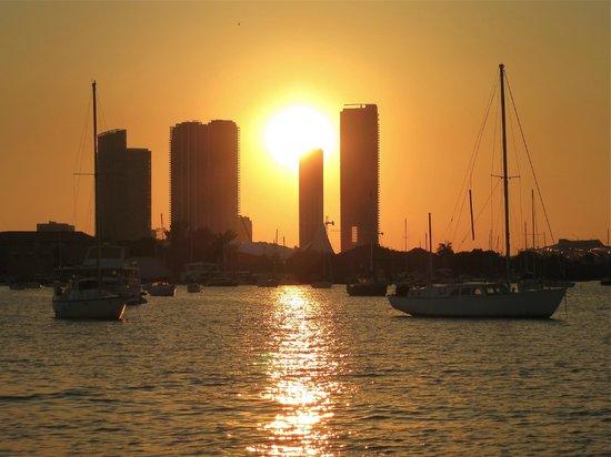 Miami Aqua Tours: Sunset sparkles on the water