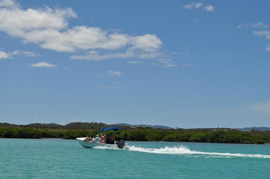 Paddles Snorkel and Kayak Eco Adventure: Motorboat that tours you around