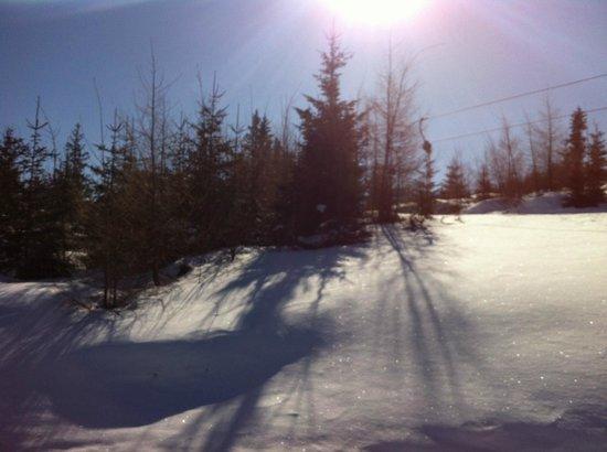 Lambrechterhof - Das Naturparkhotel: Skigebiet St. Lambrecht - Grebenzen