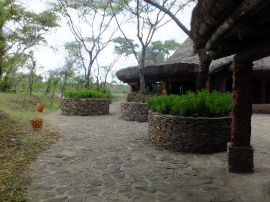 Alt var udtænkt i runde former, Serengeti Serena Safari Lodge