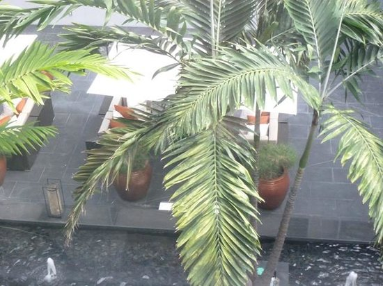Boulan South Beach: jardines