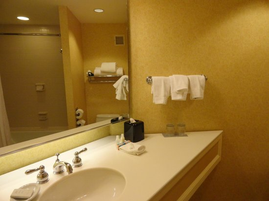 The Worthington Renaissance Fort Worth Hotel: Bathroom