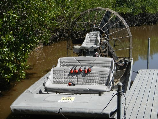 Jungle Erv's Everglades Airboat Tours: Air boat