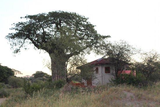 Osupuko Lodge: Entrada habitación