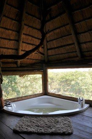 Pezulu Tree House Game Lodge: Vue sur la nature depuis la baignoire