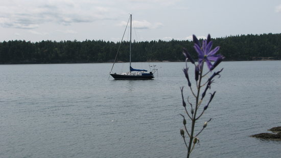 Sucia Island State Park: anchored in eecho bay