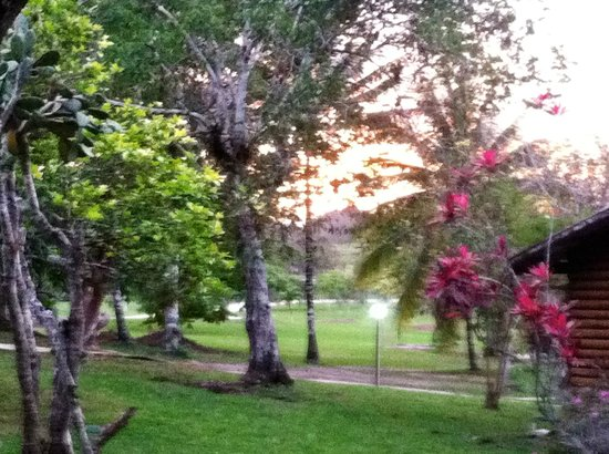 The Log Cab-Inn: View from the cabin area as the sun sets.