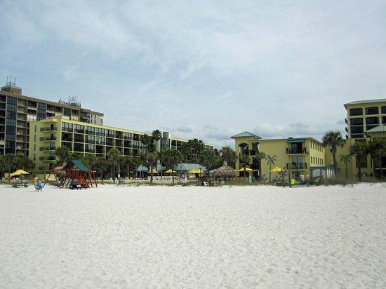 Sirata Beach Resort: View from the beach