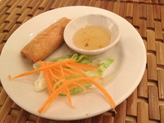 Thai Bangkok: Spring Roll