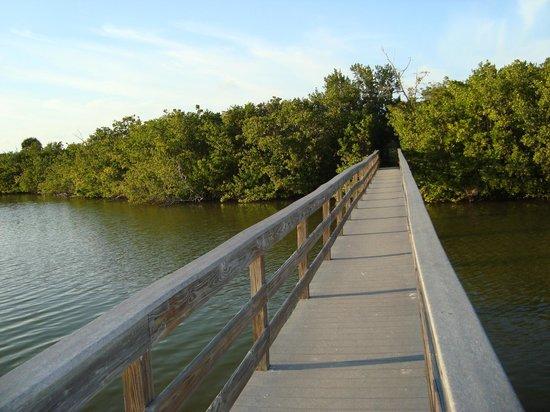 Blind Pass Condominiums: Bridge across the estuary