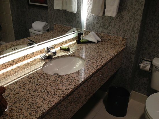 Embassy Suites by Hilton Dulles Airport : clean bathroom