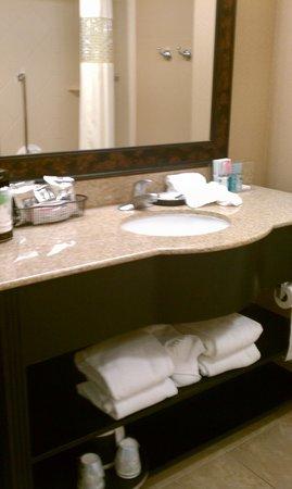 Hampton Inn & Suites Greenville - Downtown - Riverplace : bathroom