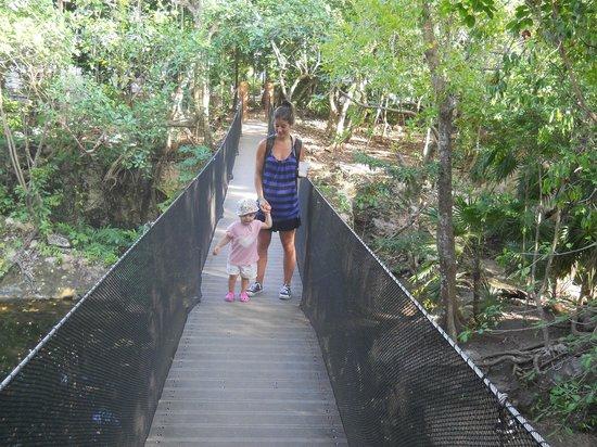 Sandos Caracol Eco Resort: Puente colgante