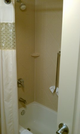 Hampton Inn & Suites Greenville - Downtown - Riverplace: bathroom