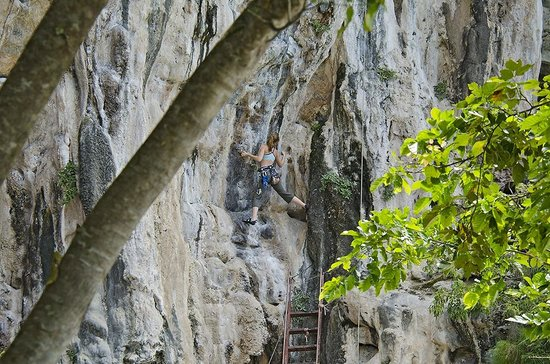 Tonsai Bay Resort: Climbers from the restraurant.