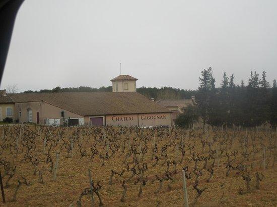 Chateau Gigognan : le chateau vue en arrivant