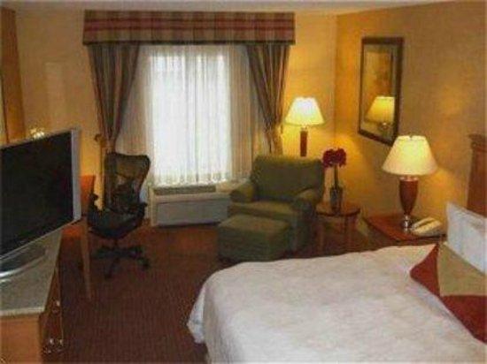Hilton Garden Inn Chicago/Tinley Park: 1 King Bed
