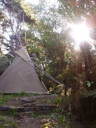 Solscape: Our tipi