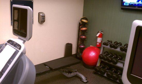 Hampton Inn & Suites Greenville - Downtown - Riverplace : fitness