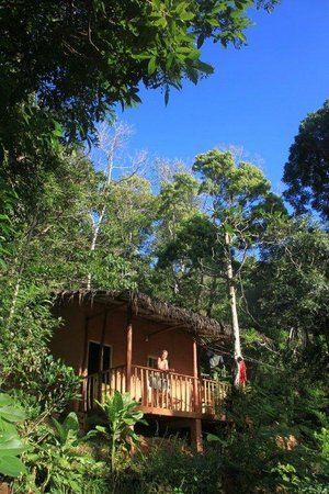 Polwaththa Eco Lodges: bungalow in jungle